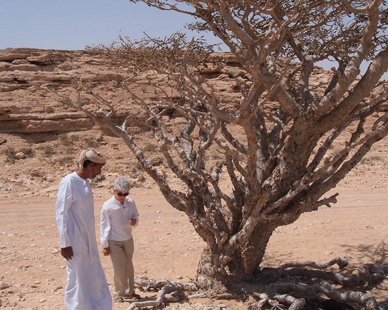 The Oman Empty Quarter - Rub' Al Khalif - Frankincense in the Desert